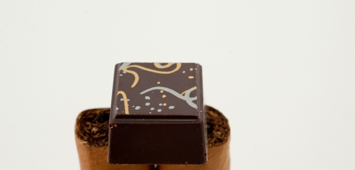 Delysia Chocolatier - Attention to Stunning Details